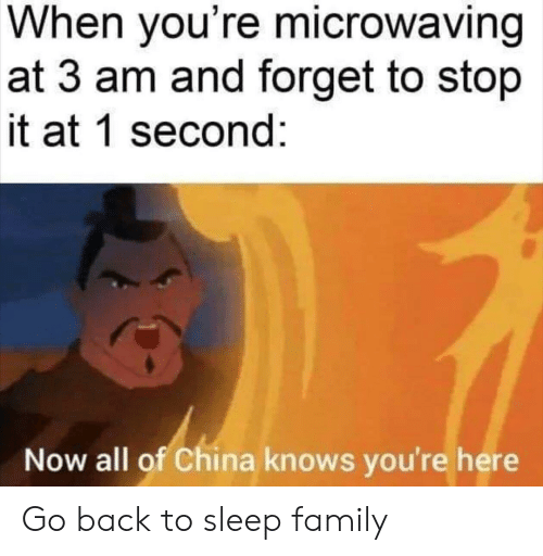 Family, Reddit, and China: When you're microwaving  at 3 am and forget to stop  it at 1 second:  Now all of China knows you're here Go back to sleep family