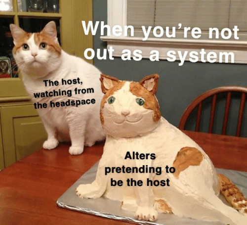The Host, Host, and System: When you're not  out as a system  The host,  watching from  the headspace  Alters  pretending to  be the host