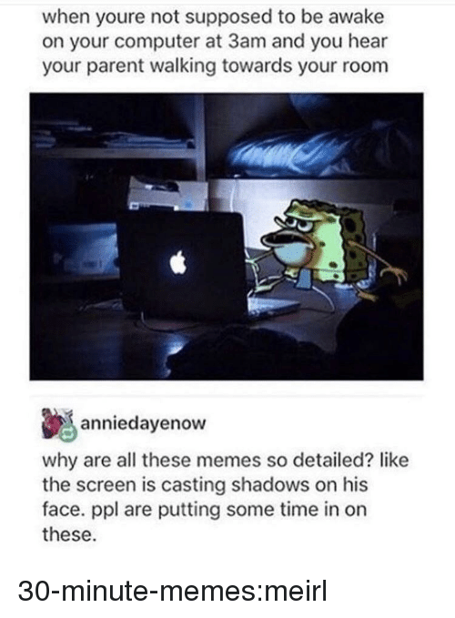Memes, Target, and Tumblr: when youre not supposed to be awake  on your computer at 3am and you hear  your parent walking towards your room  anniedayenow  why are all these memes so detailed? like  the screen is casting shadows on his  face. ppl are putting some time in on  these. 30-minute-memes:meirl