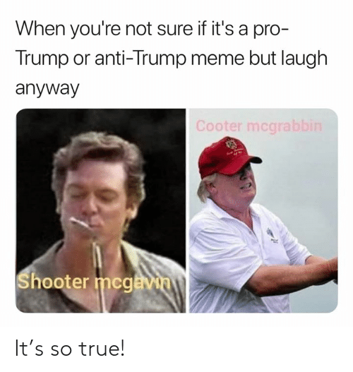 Meme, Memes, and True: When you're not sure if it's a pro-  Trump or anti-Trump meme but laugh  anyway  Cooter mcgrab  hooter mcgå It's so true!