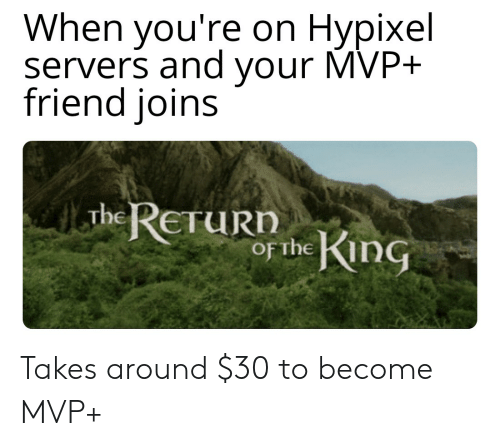 When You're on Hypixel Servers and Your MVP+ Friend Ioins the ReruRn