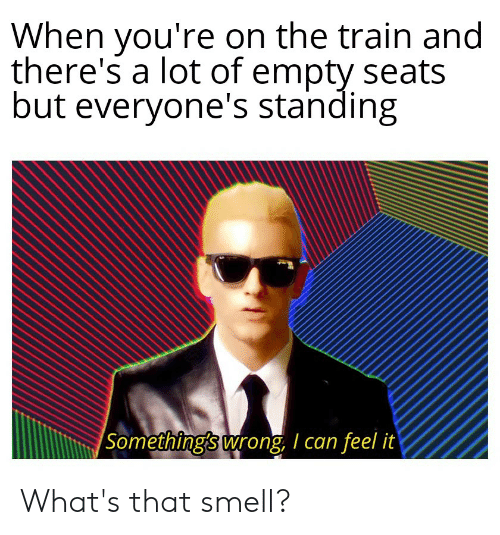 Smell, Train, and Dank Memes: When you're on the train and  there's a lot of empty seats  but everyone's standing  Something's wrong, I can feel it What's that smell?