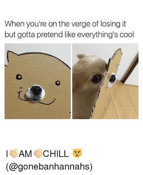 Memes, Cool, and On the Verge: When you're on the verge of losing it  but gotta pretend like everything's cool I👏🏼AM👏🏼CHILL 😾(@gonebanhannahs)