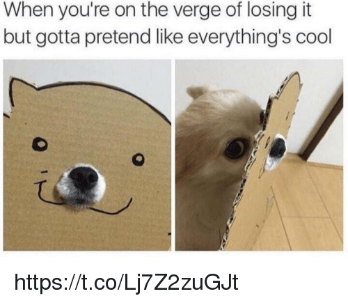 Memes, Cool, and On the Verge: When you're on the verge of losing it  but gotta pretend like everything's cool https://t.co/Lj7Z2zuGJt