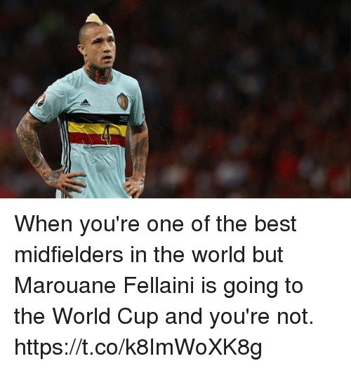 Memes, World Cup, and Best: When you're one of the best midfielders in the world but Marouane Fellaini is going to the World Cup and you're not. https://t.co/k8ImWoXK8g