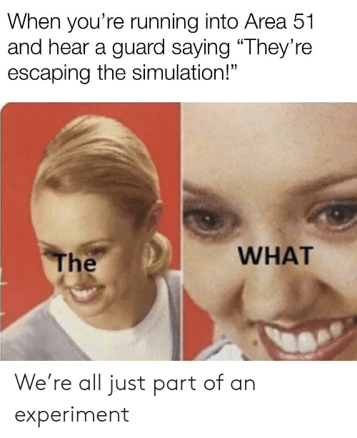 """Running, Area 51, and All: When you're running into Area 51  and hear a guard saying """"They're  escaping the simulation!""""  WHAT  The We're all just part of an experiment"""