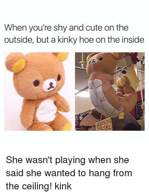 Hoe, Hoes, and Memes: When you're shy and cute on the  outside, but a kinky hoe on the inside She wasn't playing when she said she wanted to hang from the ceiling! kink