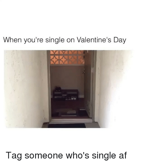 Memes, 🤖, and Single-Af: When you're single on Valentine's Day Tag someone who's single af