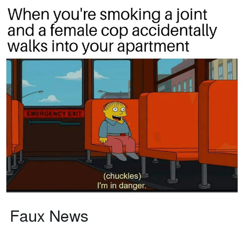 News, Smoking, and Dank Memes: When you're smoking a joint  and a female cop accidentally  walks into your apartment  EMERGENCY EXIT  (chuckles)  I'm in danger. Faux News