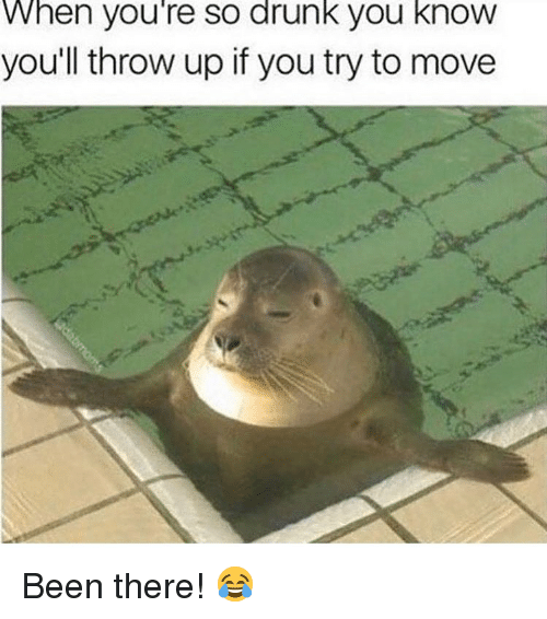 Drunk, Memes, and Throw Up: When you're so drunk you know  you'll throw up if you try to move Been there! 😂