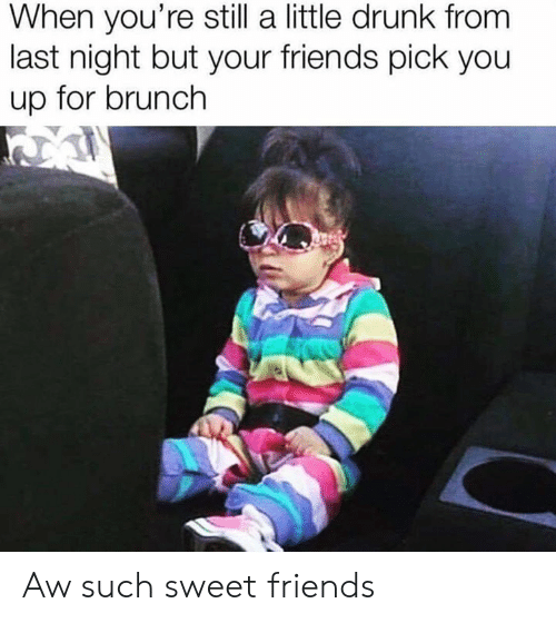 Drunk, Friends, and Memes: When you're still a little drunk from  last night but your friends pick you  up for brunch Aw such sweet friends