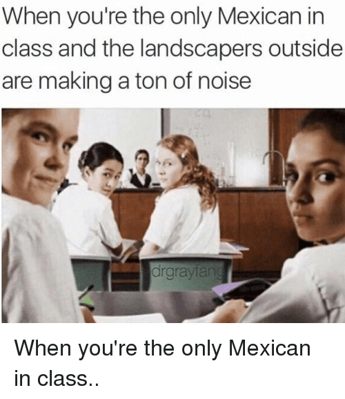 When Youre The Only Mexican In Class And The Landscapers Outside Are Making A Ton Of -7196