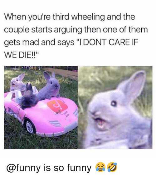 "Funny, Memes, and Mad: When you're third wheeling and the  couple starts arguing then one of them  gets mad and says ""I DONT CARE IF  WE DIE!!"" @funny is so funny 😂🤣"