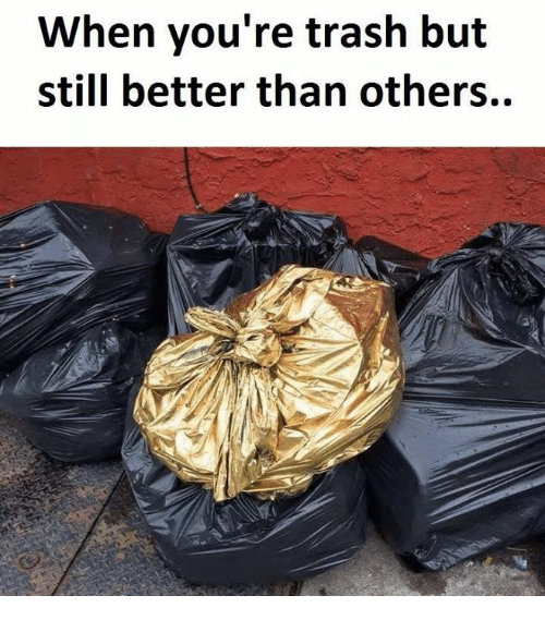 when youre trash but still better than others 14467375 ✅ 25 best memes about youre trash youre trash memes,Meme Trash