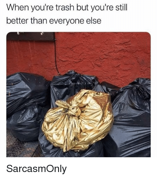 Funny, Memes, and Trash: When you're trash but you're stil  better than everyone else SarcasmOnly