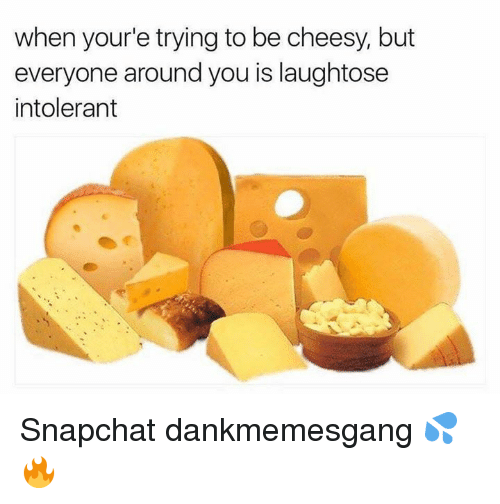 Memes, Snapchat, and 🤖: when your'e trying to be cheesy, but  everyone around you is laughtose  intolerant Snapchat dankmemesgang 💦🔥