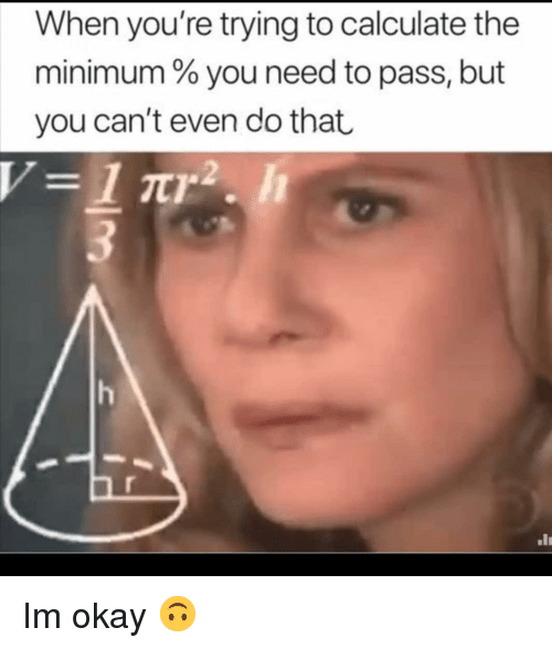 Okay, You, and Youre: When you're trying to calculate the  minimum % you need to pass, but  you can't even do that Im okay 🙃