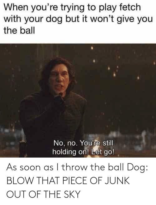 Soon..., Dank Memes, and Dog: When you're trying to play fetch  with your dog but it won't give you  the ball  No, no. You're still  holding on! Let go! As soon as I throw the ball Dog: BLOW THAT PIECE OF JUNK OUT OF THE SKY