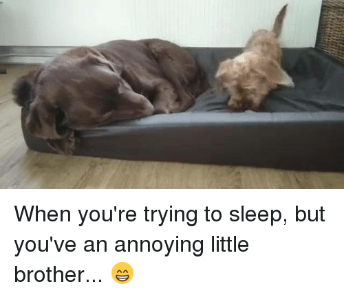 Annoying Little Brother