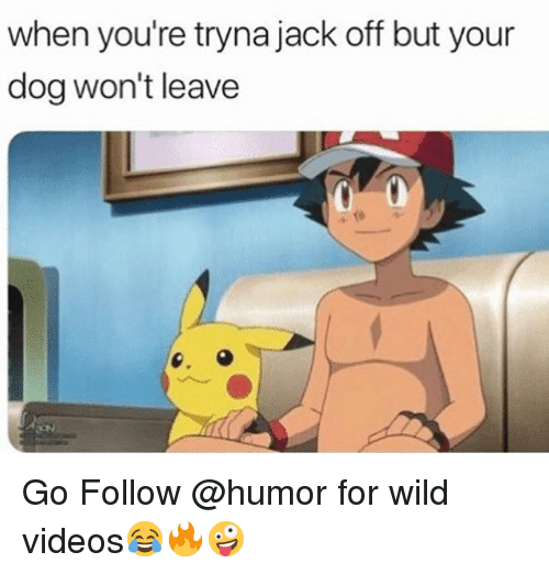 Lay you or jack off
