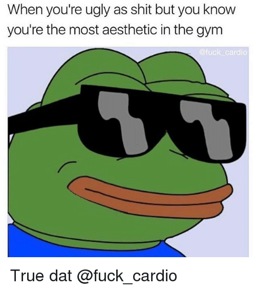 Gym, Memes, and Shit: When you're ugly as shit but you know  you're the most aesthetic in the gym  @fuck cardio True dat @fuck_cardio