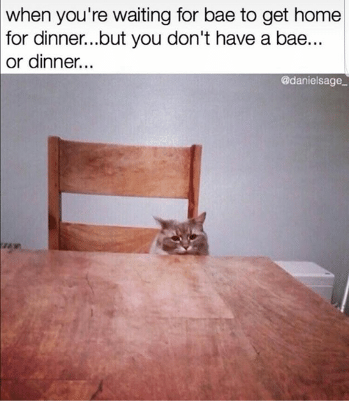 Bae, Relationships, and Home: when  you're waiting for bae to get home  dinner...but you don't have a bae...  for  or dinner...  @danielsage