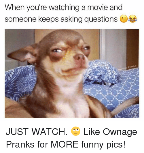 Fun Meme Questions : When you re watching a movie and someone keeps asking