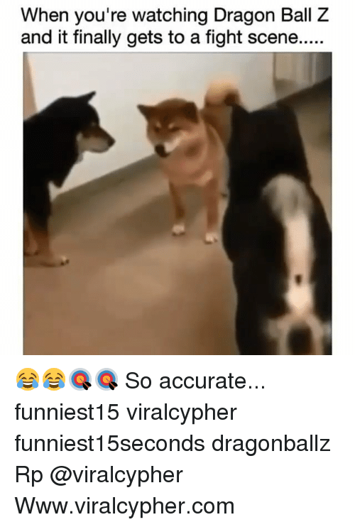 Funny, Dragon Ball Z, and Fight: When you're watching Dragon Ball Z  and it finally gets to a fight scene..... 😂😂🎯🎯 So accurate... funniest15 viralcypher funniest15seconds dragonballz Rp @viralcypher Www.viralcypher.com