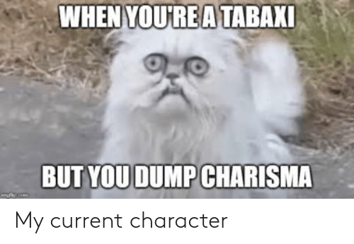WHEN YOUREA TABAXI BUT YOU DUMP CHARISMA My Current