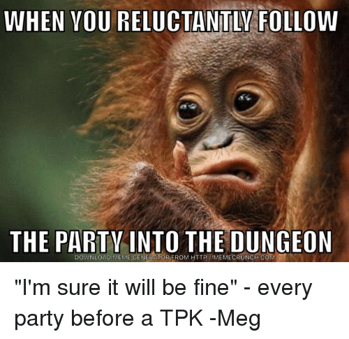 When Youreluctantly Follow The Party Into The Dungeon Download Meme