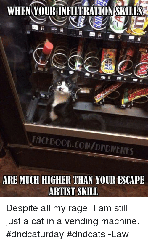 when yourinfiltrationskills facedoon comidndmemes are much higher than your escape artist 3441371 ✅ 25 best memes about despite all my rage despite all my rage