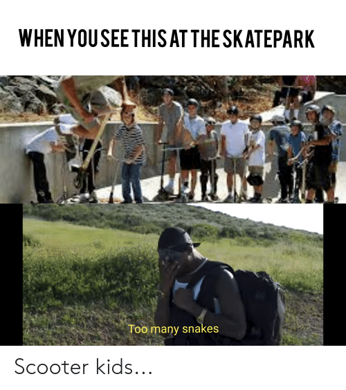 WHEN YOUSEETHIS AT THE SKATEPARK Too Many Snakes Scooter