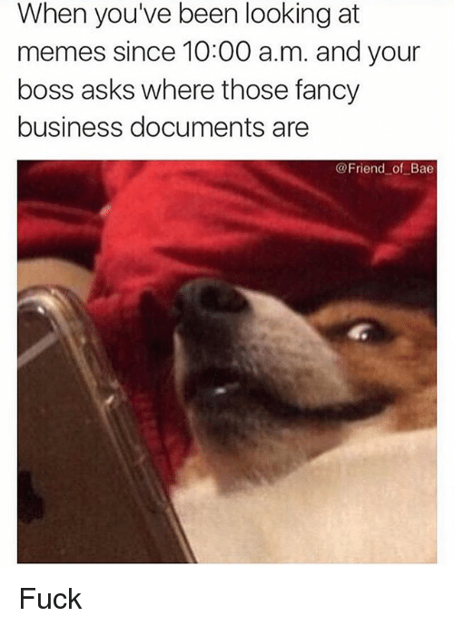 Bae, Funny, and Memes: When youve been looking at  memes since 10:00 a.m. and your  boss asks where those fancy  business documents are  @Friend of Bae Fuck