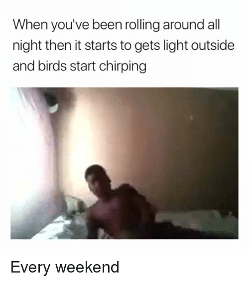 Memes, Birds, and Been: When you've been rolling around all  night then it starts to gets light outside  and birds start chirping Every weekend