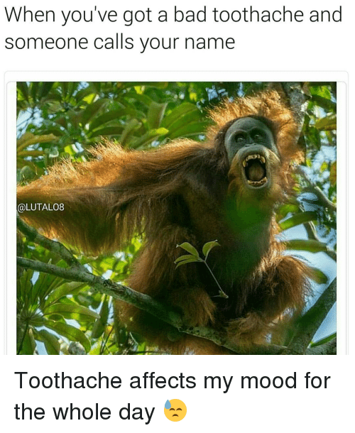 when youve got a bad toothache and someone calls your 13047486 25 best my mood memes mood swing memes, accordance memes