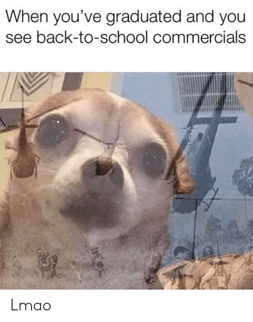 Lmao, School, and Back: When you've graduated and you  see back-to-school commercials Lmao