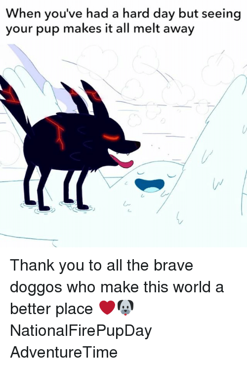 Memes, Thank You, and Brave: When you've had a hard day but seeing  your pup makes it all melt away Thank you to all the brave doggos who make this world a better place ❤️🐶 NationalFirePupDay AdventureTime