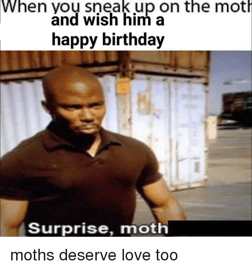 Birthday Love And Happy When Yoy Sneak Up On The Moth Save Meme
