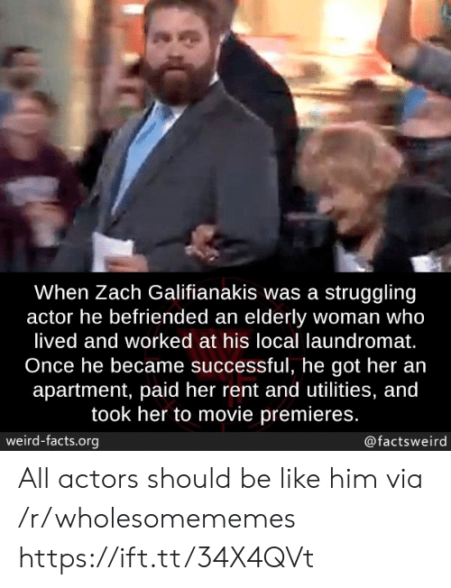 Be Like, Facts, and Laundromat: When Zach Galifianakis was a struggling  actor he befriended an elderly woman who  lived and worked at his local laundromat.  Once he became successful, he got her an  apartment, paid her rent and utilities, and  took her to movie premieres.  weird-facts.org  @factsweird All actors should be like him via /r/wholesomememes https://ift.tt/34X4QVt