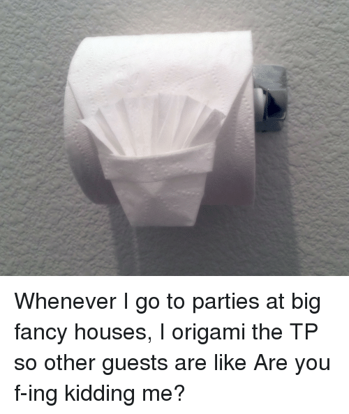 Fancy, Origami, and Big: Whenever I go to parties at big fancy houses, I origami the TP so other guests are like Are you f-ing kidding me?