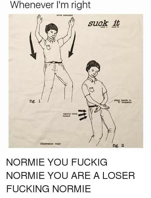 Memes, Normie, and 🤖: Whenever I'm right  ADS extended  suck it  place bands tn  fig. l  Clustrattion only  fig. 2 NORMIE YOU FUCKIG NORMIE YOU ARE A LOSER FUCKING NORMIE