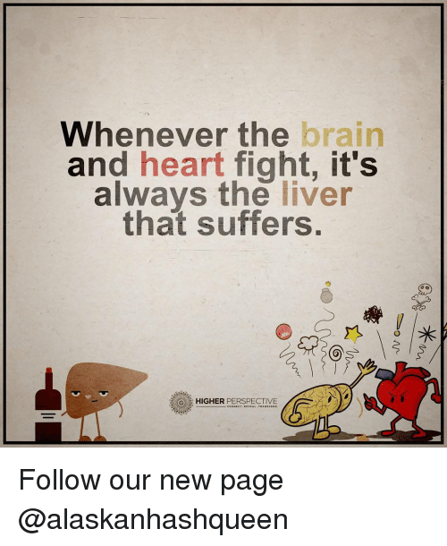 Memes, Suffering, and Fight: Whenever the  brain  and  heart fight, it's  always the  liver  that suffers.  3 HIGHER  PERSPECTIVE Follow our new page @alaskanhashqueen
