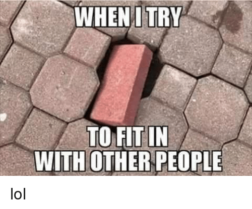 Dank, Lol, and 🤖: WHENI TRY  TO FIT IN  WITH OTHER PEOPLE lol