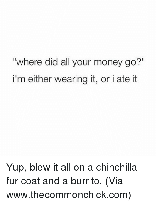 "Memes, 🤖, and Burrito: ""where did all your money go?""  i'm either wearing it, or i ate it Yup, blew it all on a chinchilla fur coat and a burrito. (Via www.thecommonchick.com)"