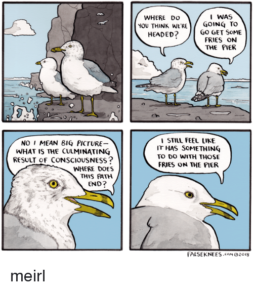 Mean, What Is, and MeIRL: WHERE DO  1 WAS  YOU THINK wE'RE/GOING TO  FRIES ON  THE PIEF  ISTILL FEEL LIKE  IT HAS SOMETHINÇ  TO DO WITH THOSE  FRIES ON THE PIEfR  NO I MEAN 81Ç PICTURE  WHAT IS THE CULMINATING  RESULT Of CONSCIOUSNESs?  WHERE DOES  THIS PATH  END?  FALSEKNEES.como2oI8 meirl