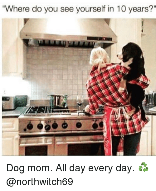"""Memes, 🤖, and Dog: """"Where do you see yourself in 10 years?"""" Dog mom. All day every day. ♻ @northwitch69"""