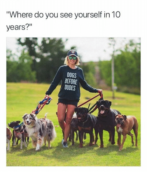 """Dogs, Relationships, and 10 Years: Where do you see yourself in 10  years?""""  DOGS  BEFORE  DUDES"""