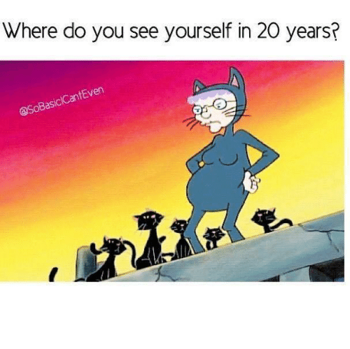 where do you see yourself