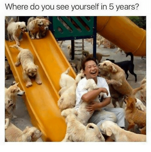 where do you see yourself in 5 years