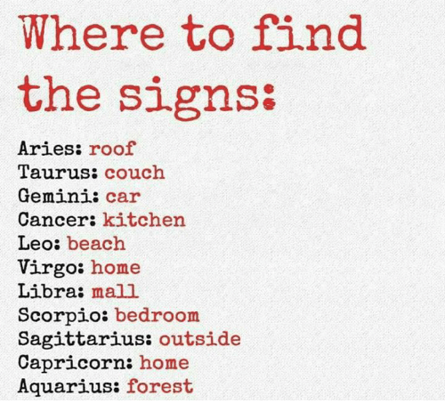 Where to Find the Signs Aries Roof Taurus Couch Gemini Car ...
